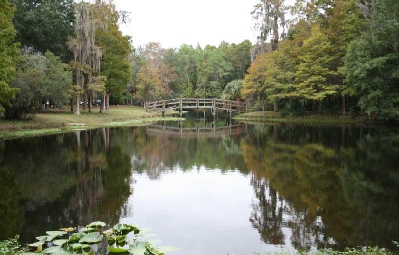 Chestnut Park Florida