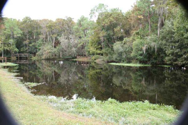 Chestnut Park Florida II
