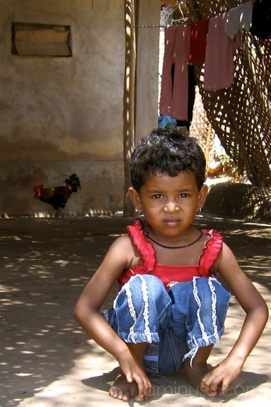 little girl and the rooster