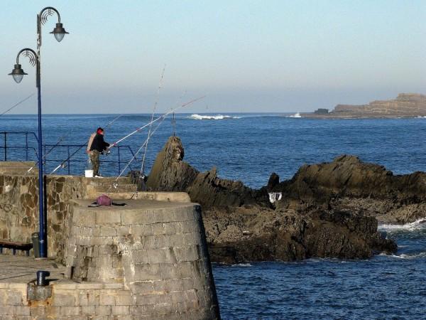 pescando pescant