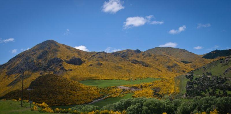 Yellow mountains