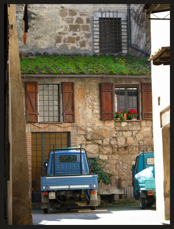 a car below roof with flowers in orte