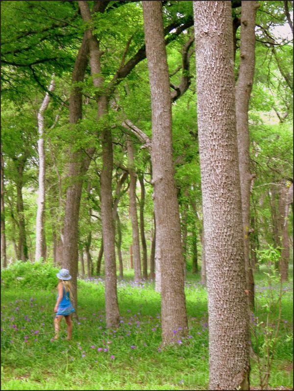girl in blue walk green trees plants