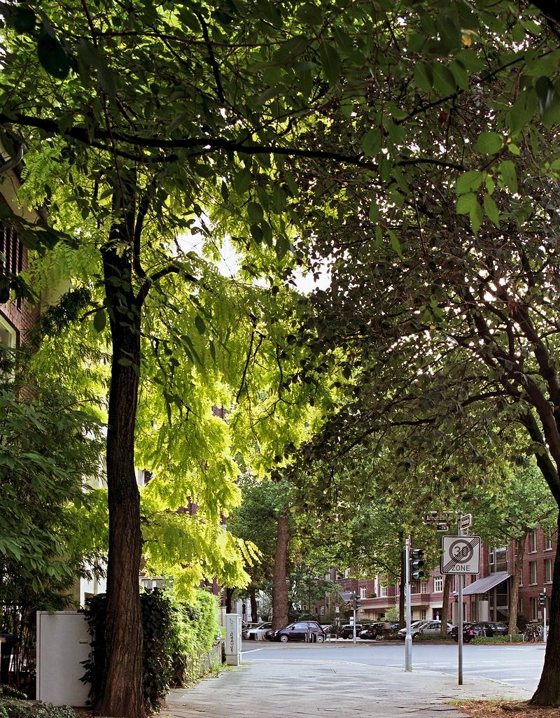 Quirinstraße