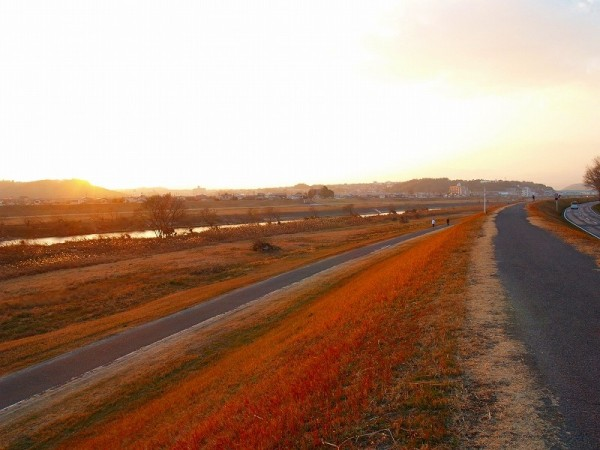 Evening glow,Banks of   Oita river 16:50