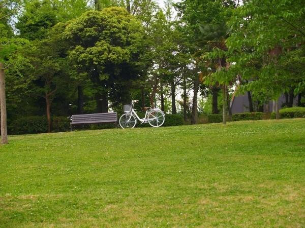 My bicycle、 kasuga park 9:25