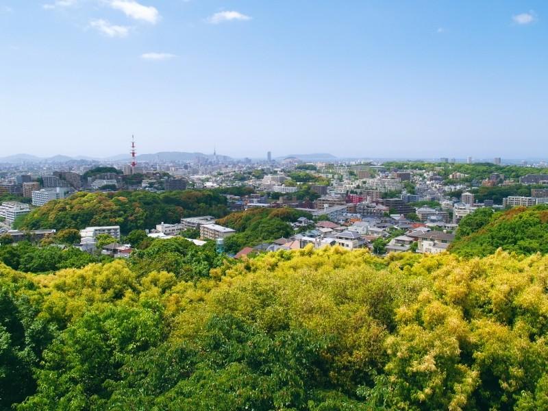 Fukuoka City View