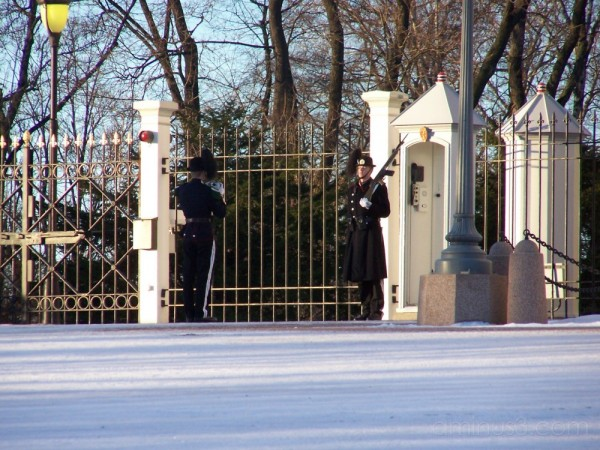Royal Gaurds in Oslo Palace