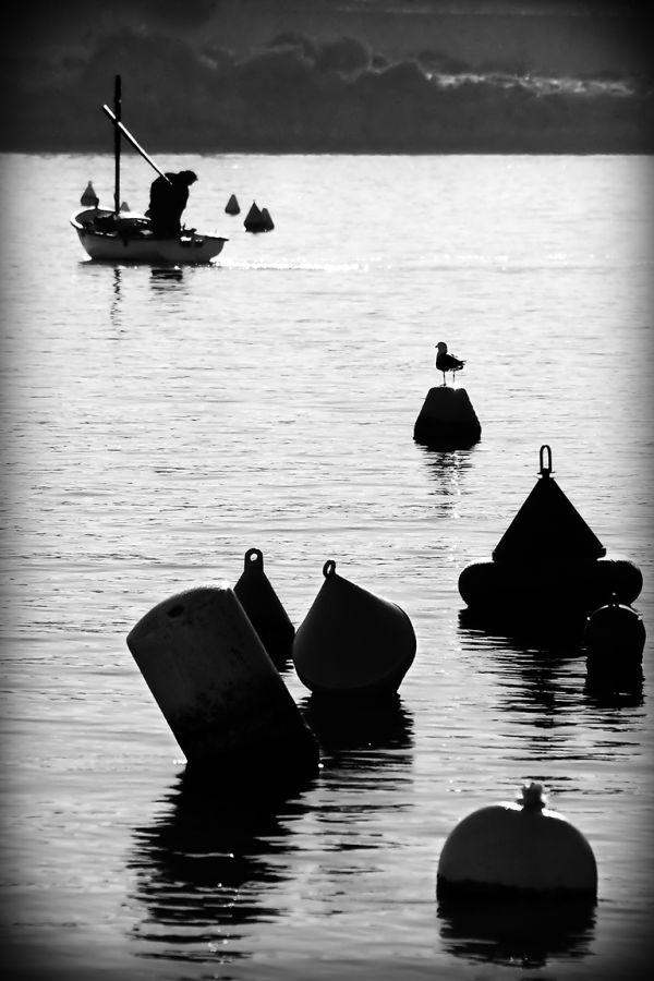 despedida al pescador fisherman goodbye
