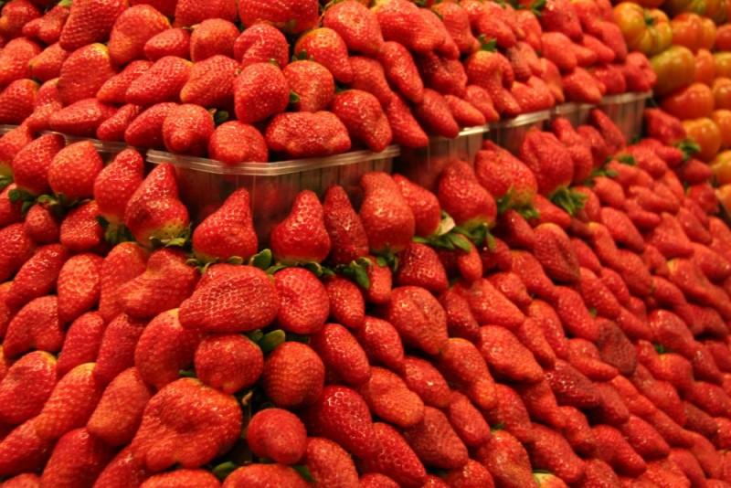 Vermell fresa