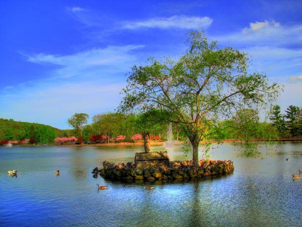Hubbard park lake