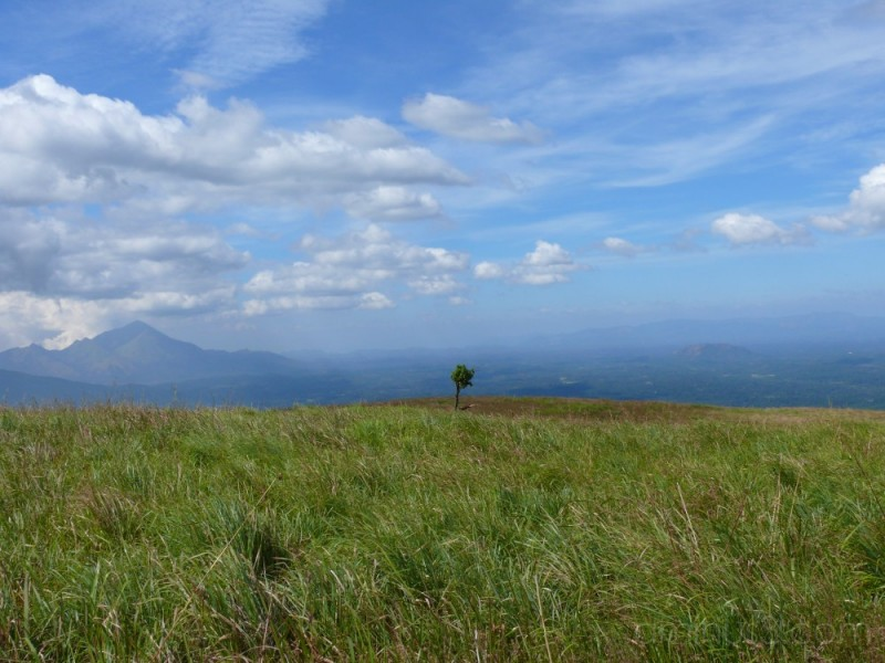 View from the trekking path to Chembra peak