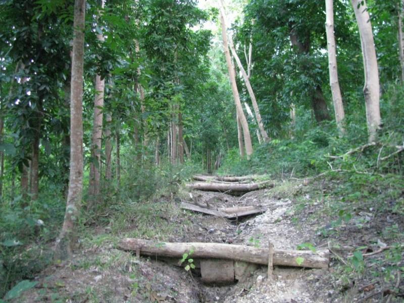 Stairway to NPA