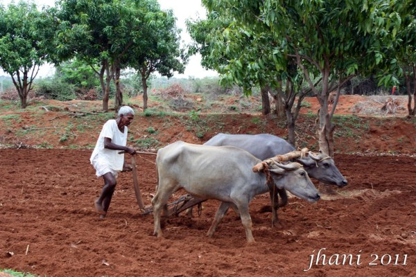 Telangana Hyderabad formers agriculture