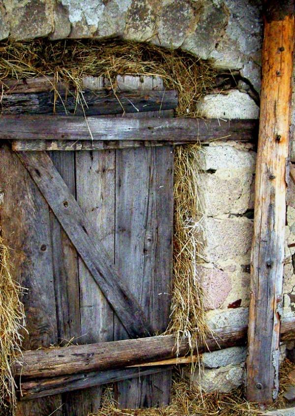 Shed door: Cigel, Slovakia
