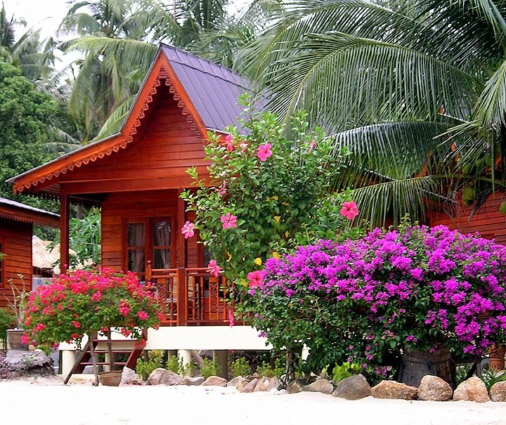 Beach hut III - Koh Phangan, Thailand