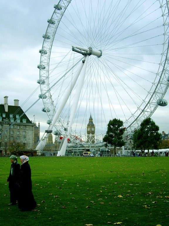 London Eye and Jubilee Gardens