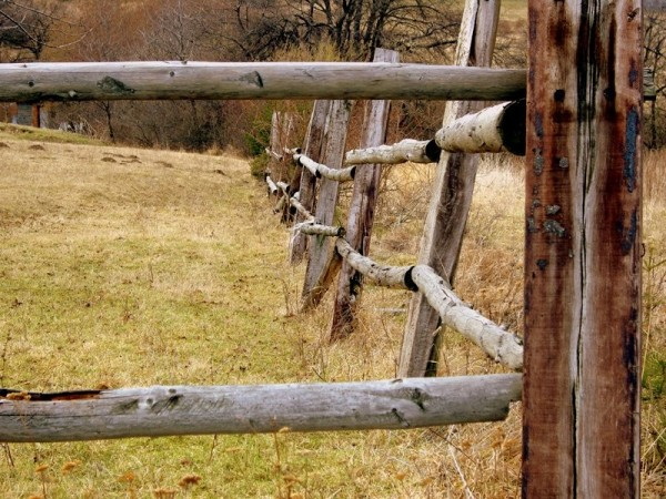 Sheep farm fence - Cigel, Slovakia