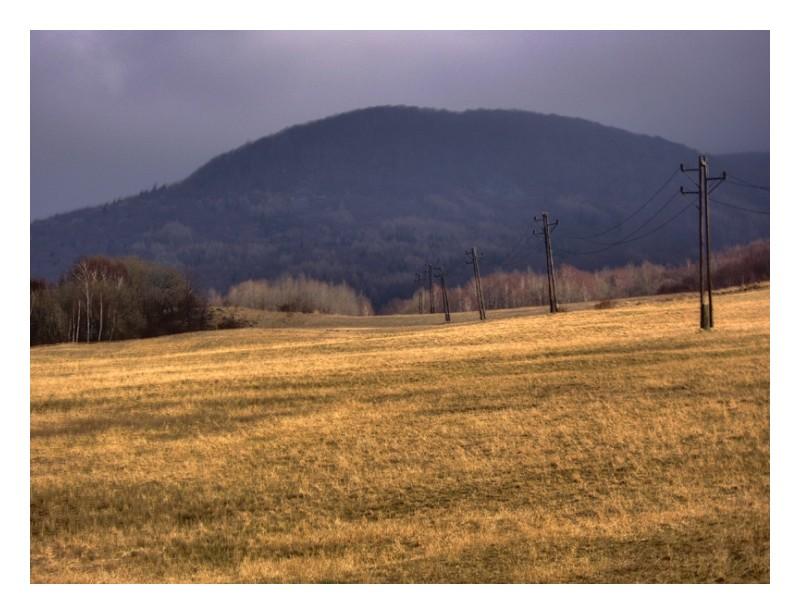 Fields - Cigel, Slovakia