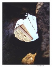 Inside a 600-year-old linden tree