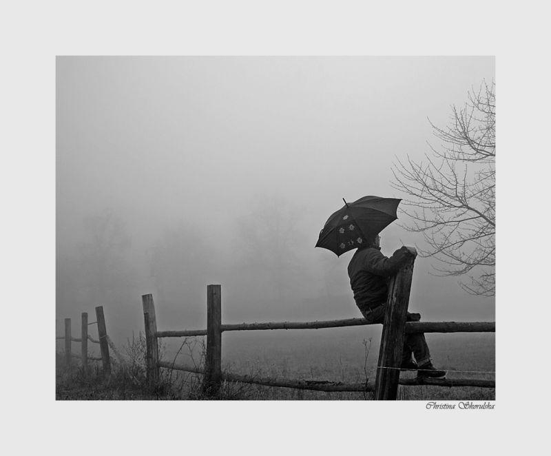 Foggy day 9:  Fence sitting