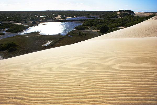 Dune and lake-Maracajau, Brazil