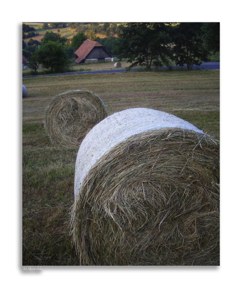 Slovak Farm