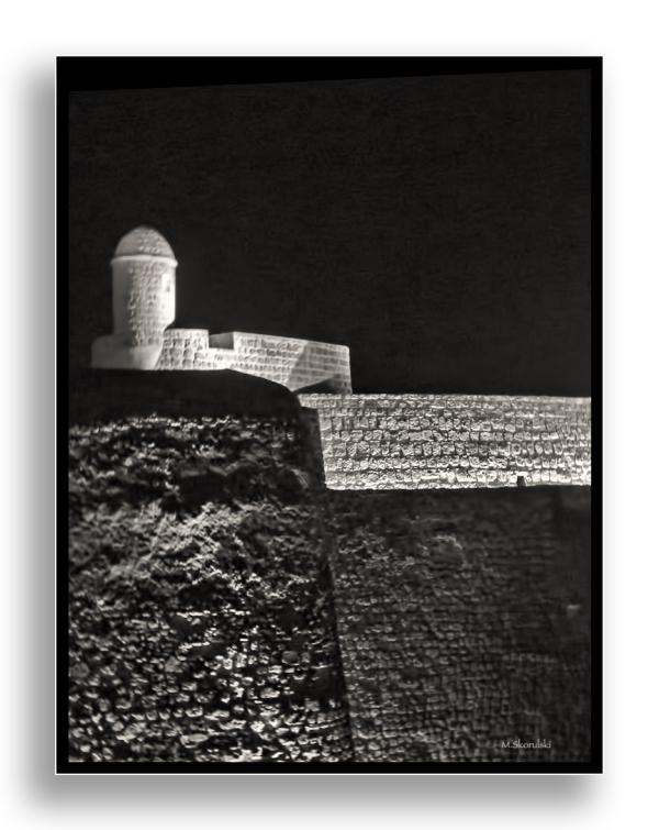 Bahrain Fort 2