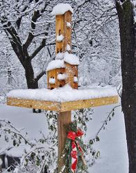 Really Snowy Bird House