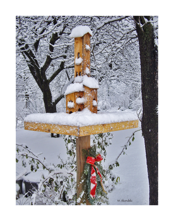 Really Snowy Bird House