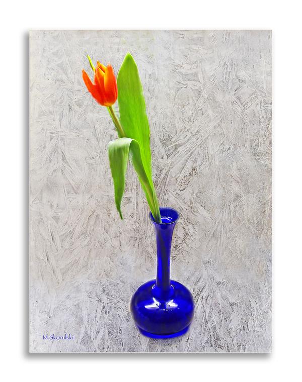 Vase with Tulip