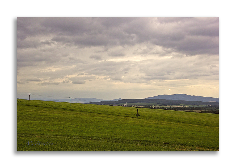 Slovak Fields in Summer 3