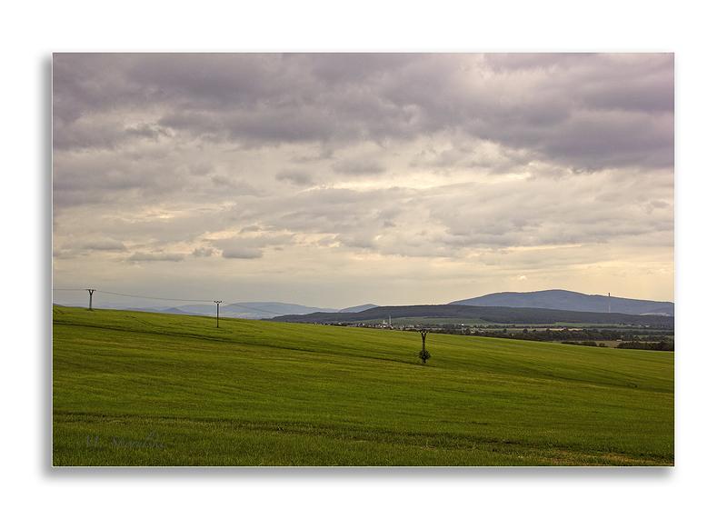 Slovak Fields in Summer 3