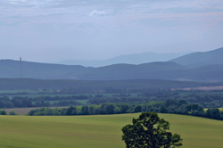 Slovak Fields in Summer