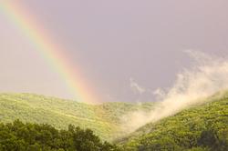 Mist and Rainbow