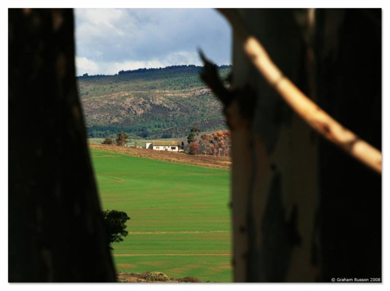 Grabouw Farm Landscape