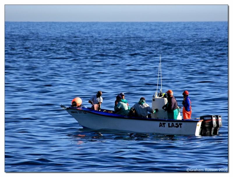 Hout Bay Fishing