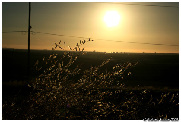 rural durbanville sunset