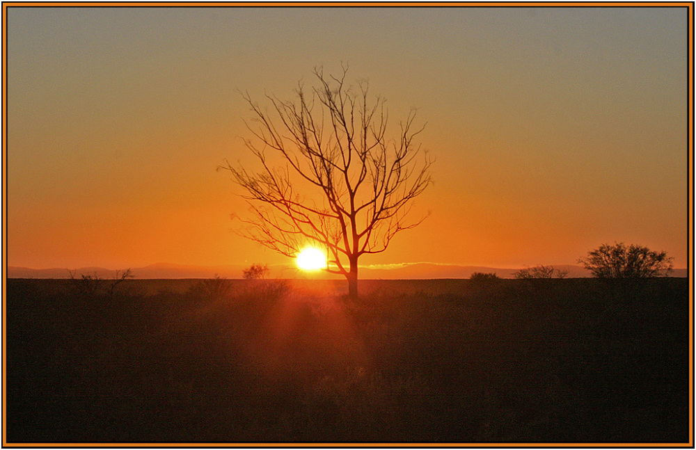 africa dawn sunrise inverdoorn