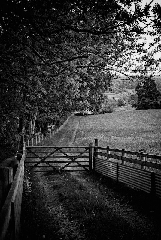 Farm track to gate