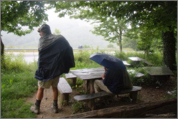 Y la lluvia se hizo música...
