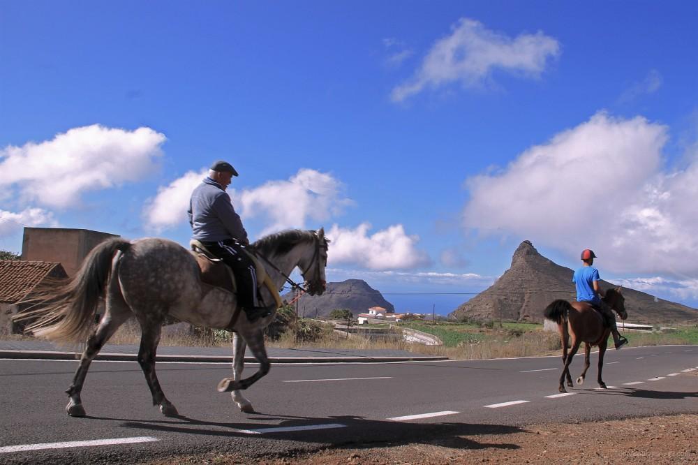 ifonche vilaflor Tenerife