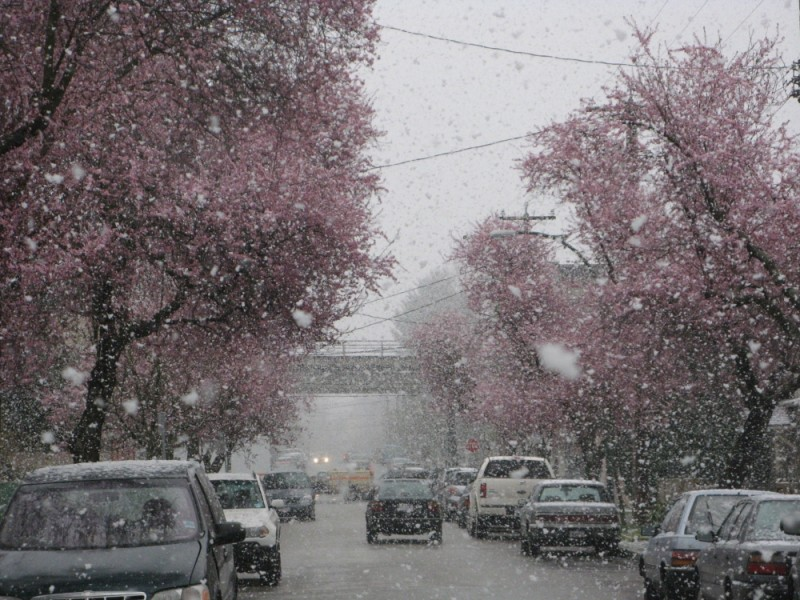 snow in Vancouver spring
