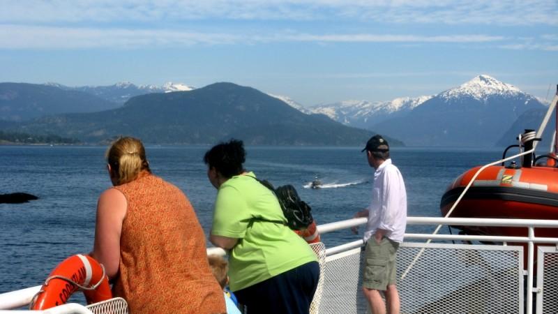 tourists admire mountain scenery