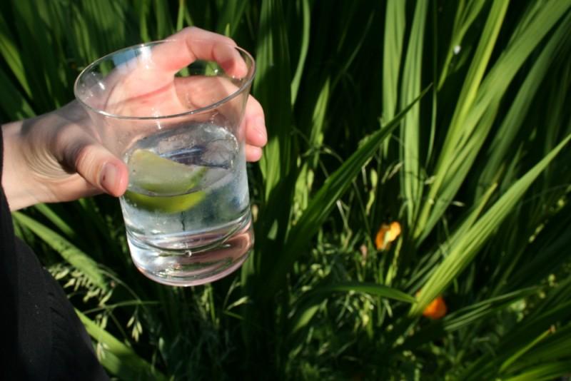 gin and tonic in the backyard