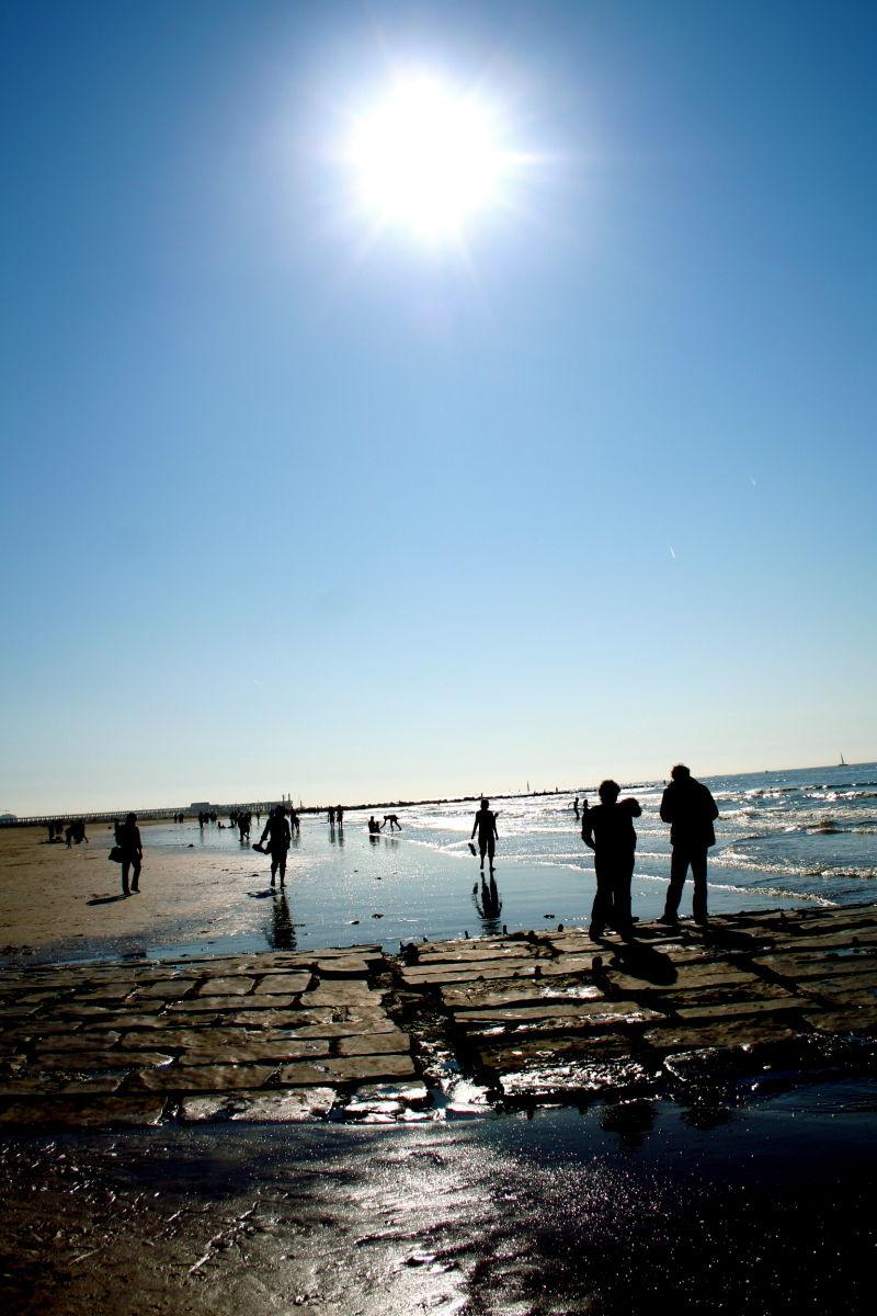 afternoon sun blankenberge