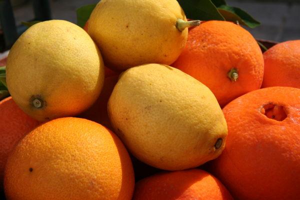 البرتقال والليمون