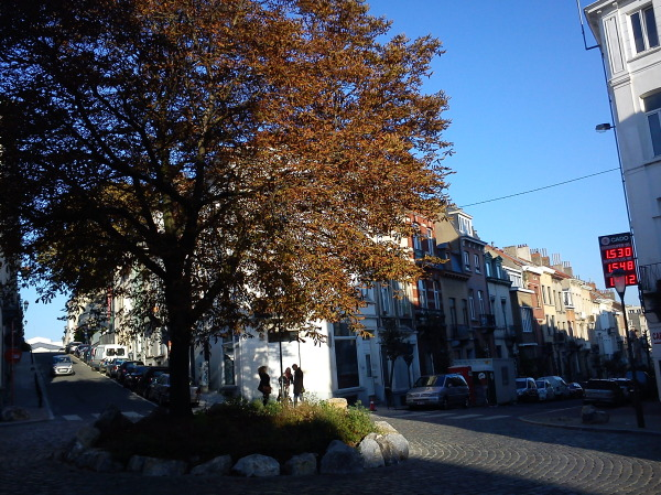 autumn in a square