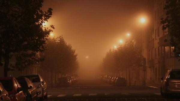Avenue de l'Emeraude by night