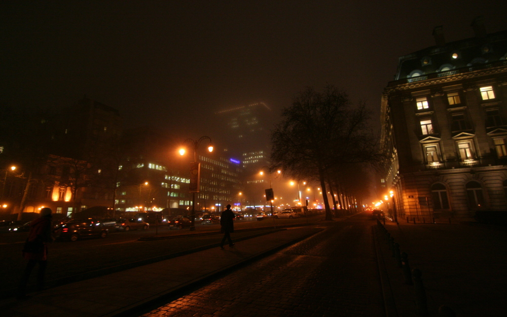 Misty spring evening